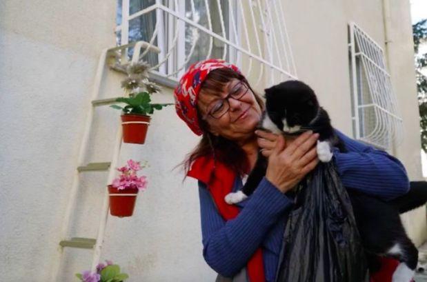 escada-para-gatos-de-rua-na-turquia-5
