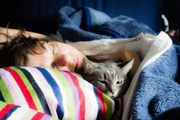 img_porque_o_seu_gato_dorme_com_voce_5_motivos_21721_paso_0_600