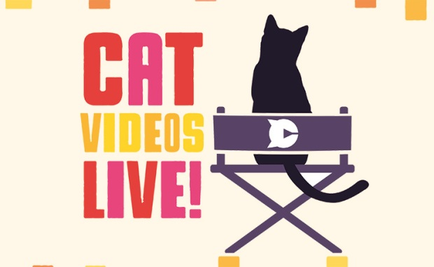 cat videos live 2