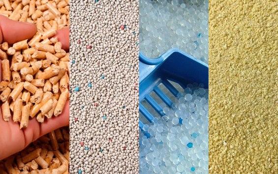 8-tipos-de-areia-para-gatos-1