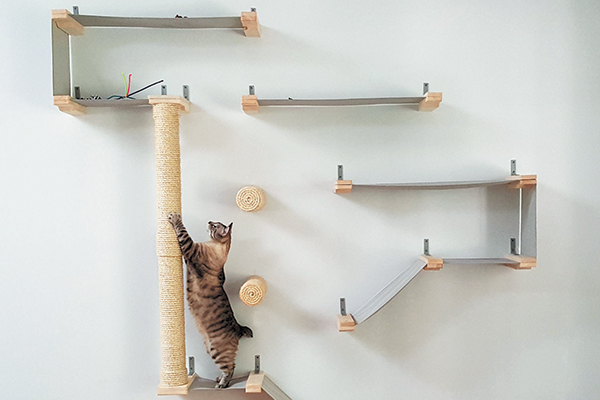A-cat-climbing-wall-with-multiple-scratching-areas[1]